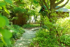 gallery_garden02
